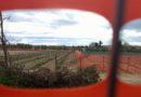 Alienazione terreni scuola agraria
