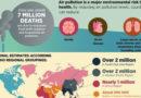 L'inquinamento atmosferico ogni anno uccide 7 milioni di persone nel mondo