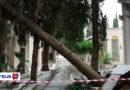 Oggi la conta dei danni dovuti alle forti raffiche di vento