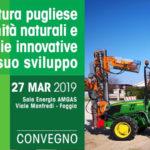 L'olivicoltura pugliese tra calamità naturali e tecnologie innovative per lo sviluppo