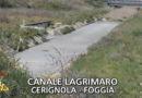 Sversamenti illegali nel Lagrimaro: grave rischio ambientale